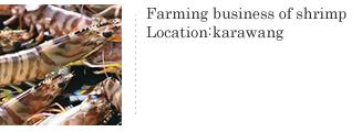 Aquaculture 養殖